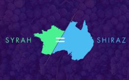 Syrah or Shiraz?