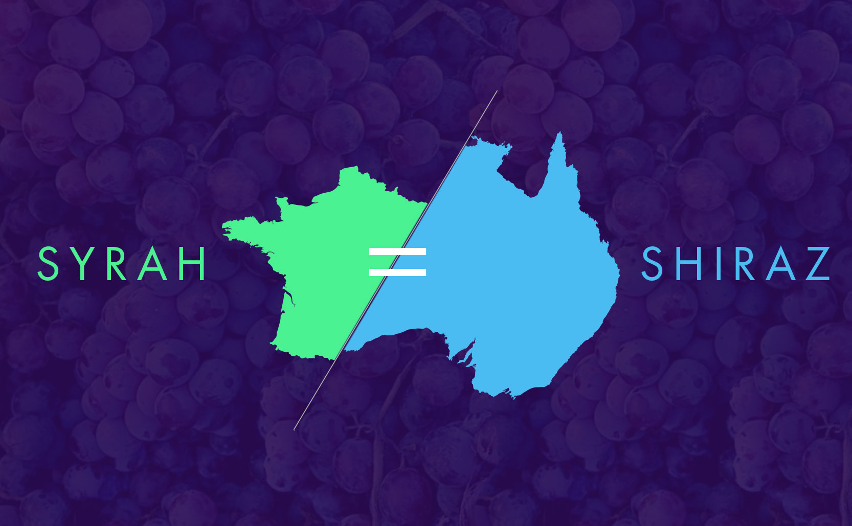 Read more about the article Syrah or Shiraz?