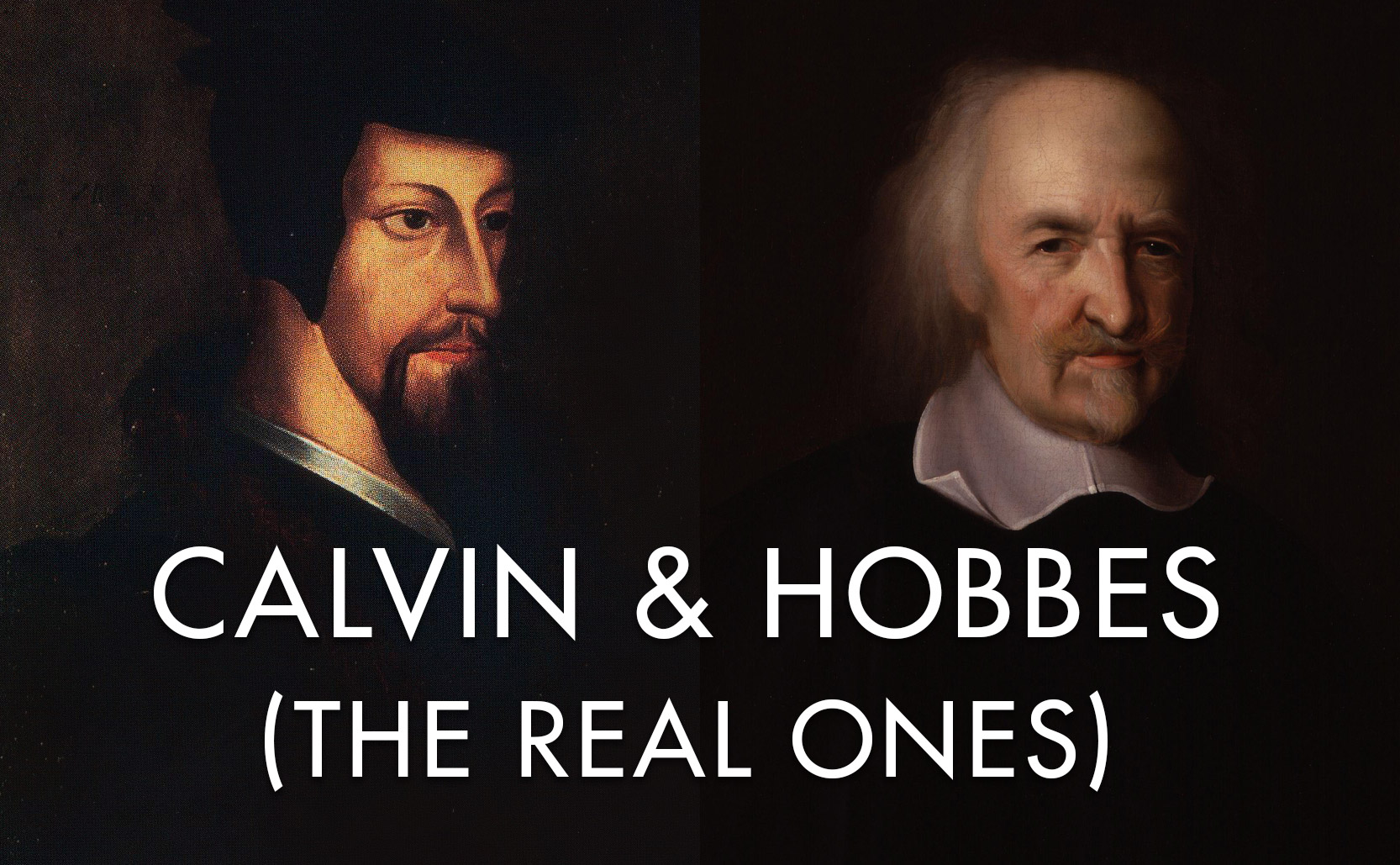 Read more about the article Calvin and Hobbes (the real ones)