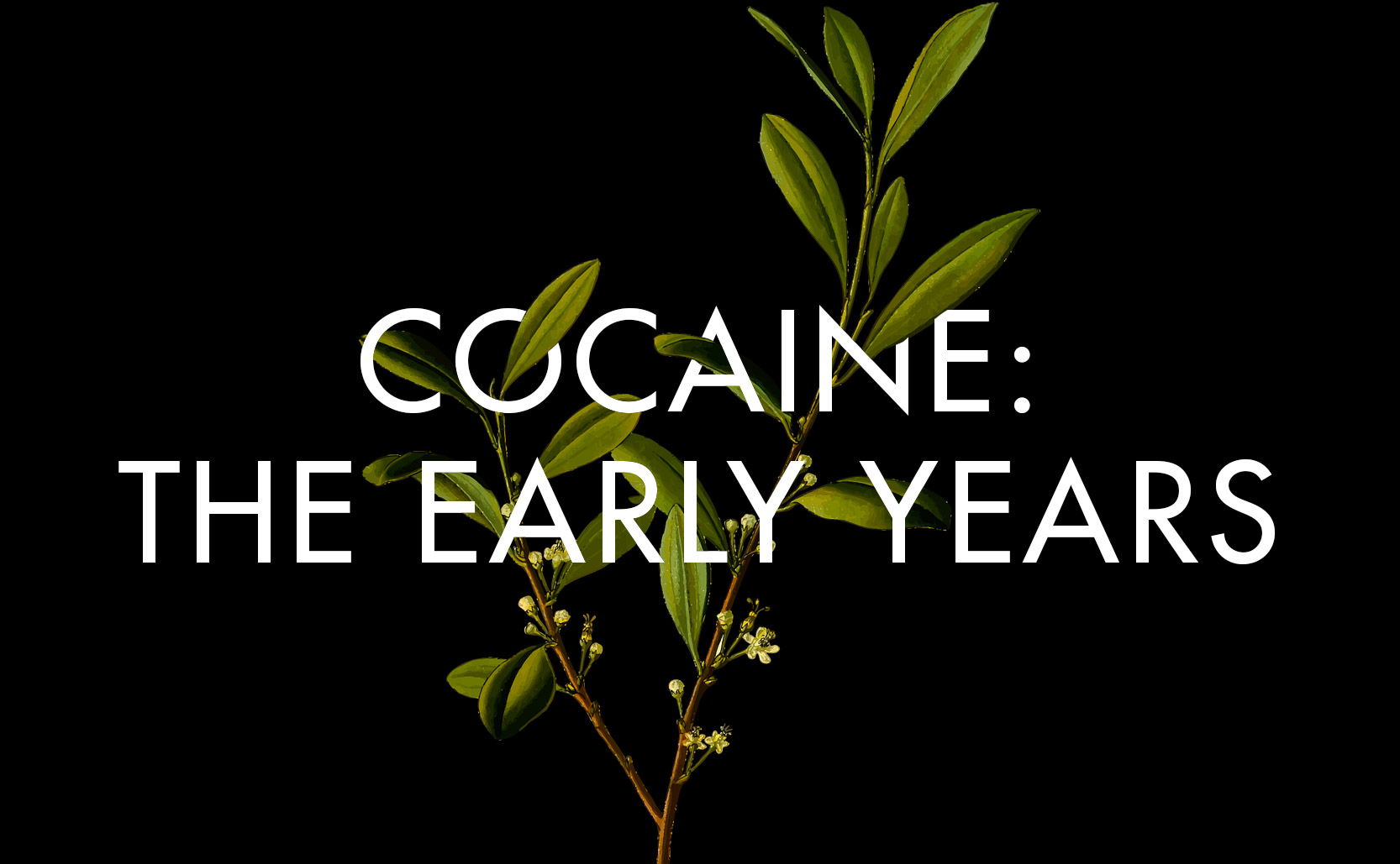 Cocaine: the Early Years