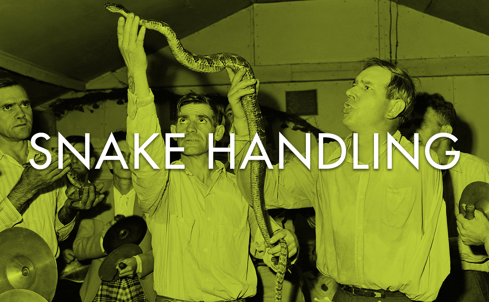 You are currently viewing Snake Handling