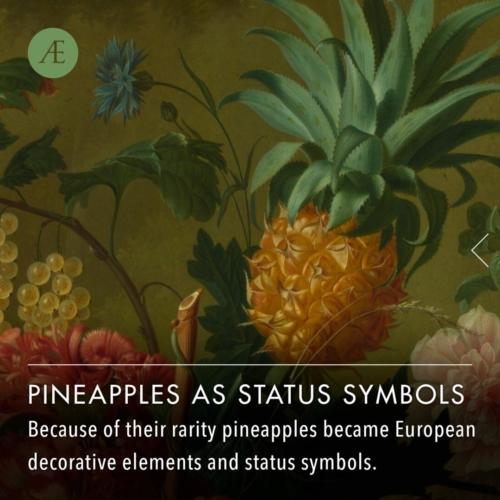Instagram-post-slider-pineapplestatus1
