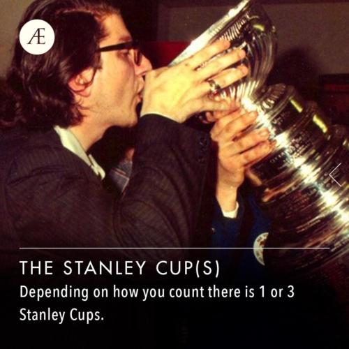 Instagram-post-slider-thestanleycups1